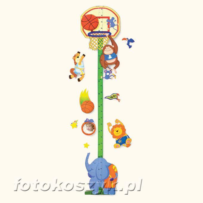 Miarka Wzrostu Koszykówka Zep RDA5214