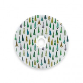 Płyta DVD TS świąteczny las (DVD-R 4,7GB 16x)