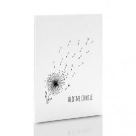 Album TS Leporello 15x21 dmuchawce B&W (5 białych kart)