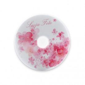 Płyta TS Sesja Foto (DVD-R 4,7GB 16x)