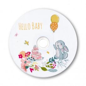 Płyta DVD Hello Baby! (DVD-R 4,7GB 16x)
