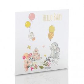 Obwoluta TS Hello Baby! (na płytę CD/DVD)